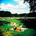 lomo in the park