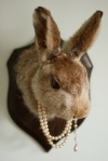 rabbit in pearls